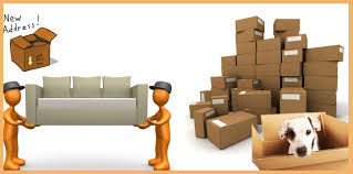 Logo of De Mariya Packers Movers Shifting With Care