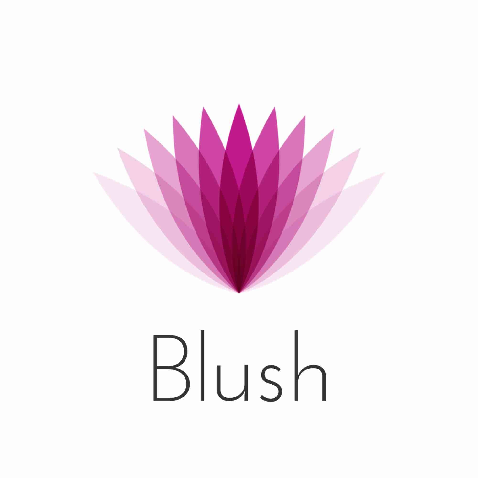 Blush _ the boutique