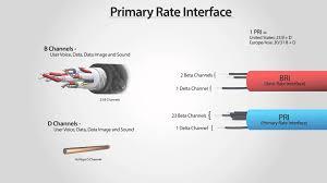 Netconnect Data Global @ 8105764444