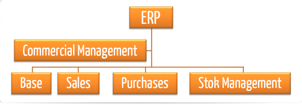 ERP Solutions in india   9654195383