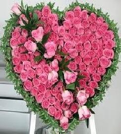 Ritus Flowers @ 9051128500