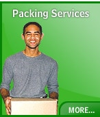 Logo of Skywing Packers & Movers