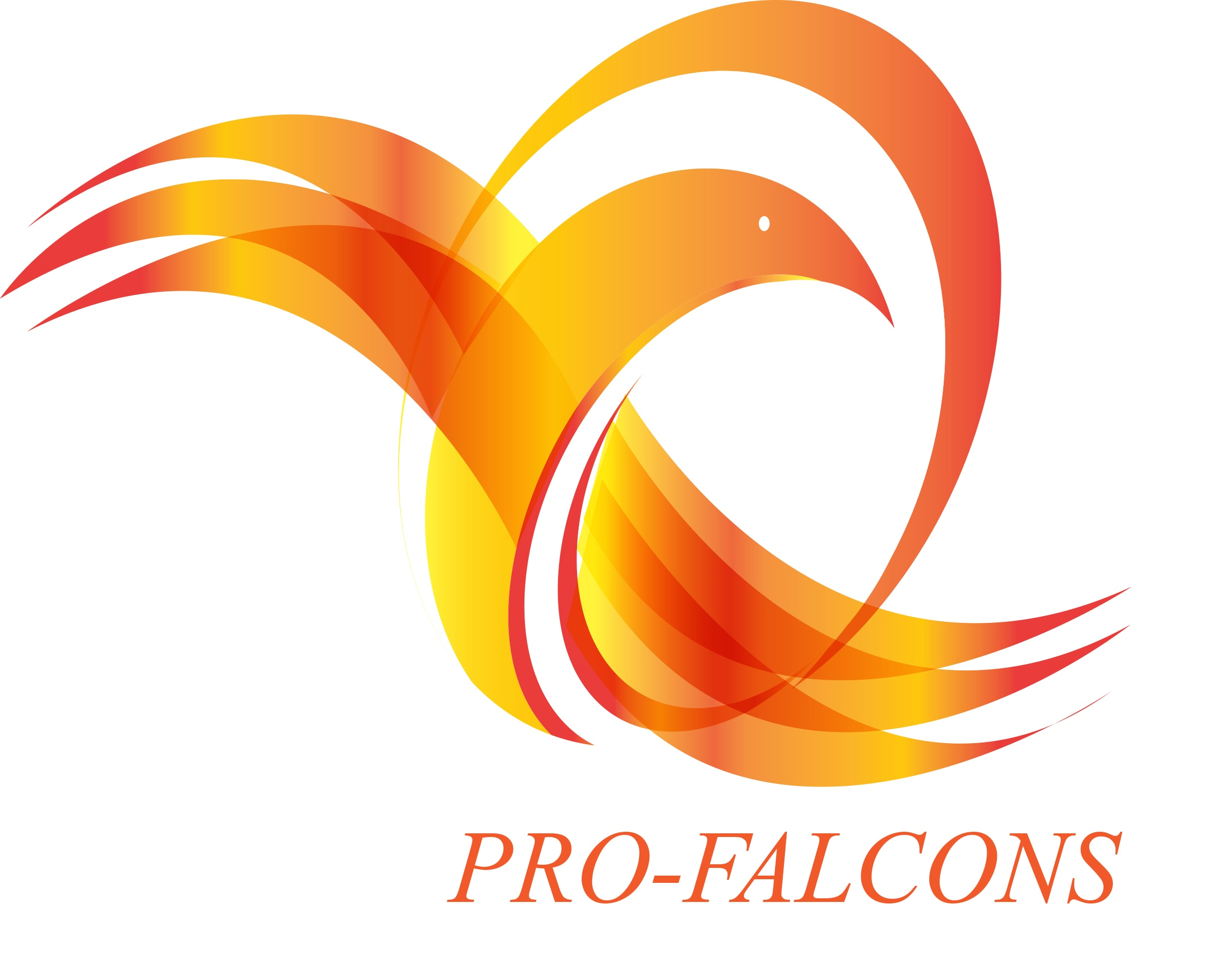 image of Pro Falcons Machinery Manufacturers