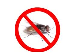 Logo of Zero Pest Solutions Call 91 9810353723