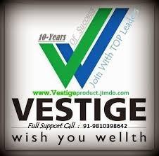 Logo of Vestige Marketing Pvt Ltd No1 Company Connect Varsha Kiran P