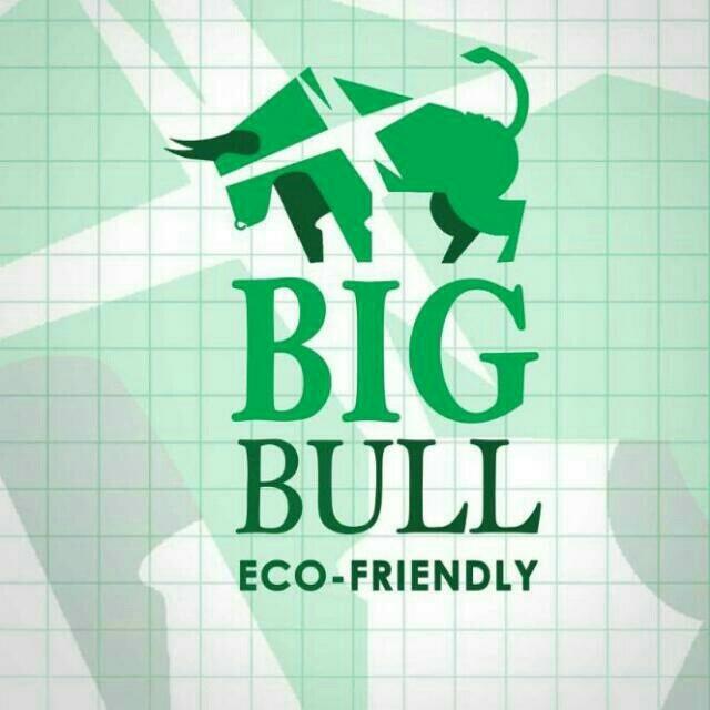 Logo of Bigbull Trader