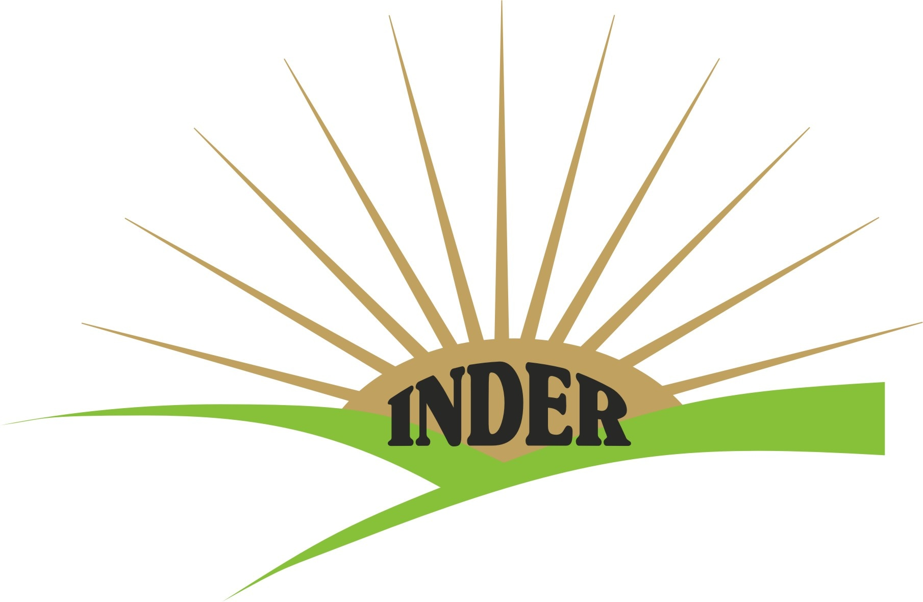 Logo of Inder Engg Works
