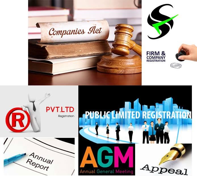 S S Auditors And Tax Consultants