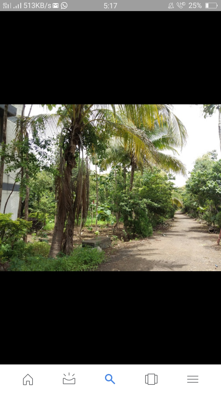 Soham Naturopathy Institute And Research Center