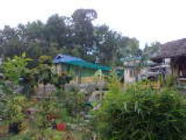 Pappachan's Castle Homestay