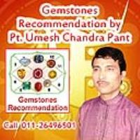 Best Astrologer in South Delhi India - Astrology Horoscope India Center