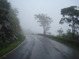 Ixora Holidays Goa