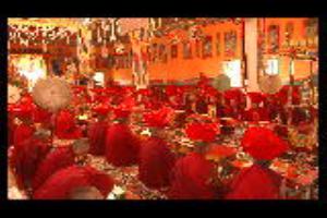 Dream Ladakh Tours & Travels