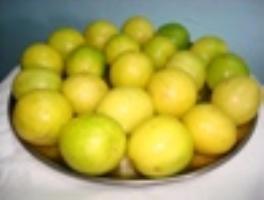 Royal Blue Star Vegetable Exporters