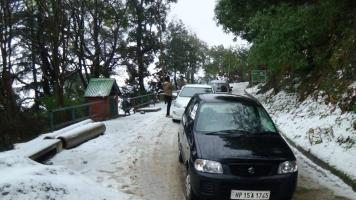 Kasauli Pines Homestay
