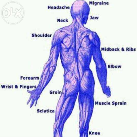 Sanjeevani Physiotherapy + 91-9560471243,9911142258