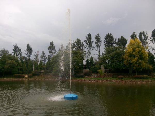 Team Water Works