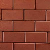 Maa Jatiani Flyash Bricks