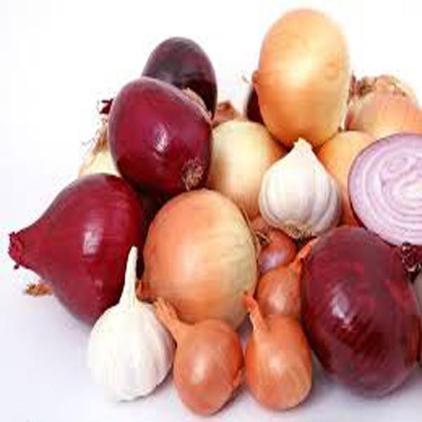 Burj Delhi BD--Fried Onion--Call-08079486117