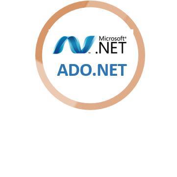 Network Education Delhi