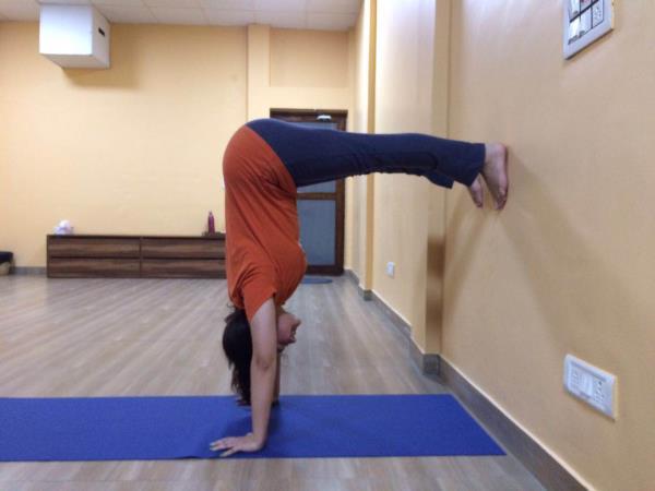 Dynami Yoga