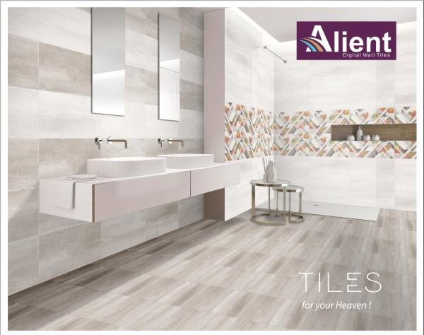 Alient Ceramics Pvt Ltd - INDIA
